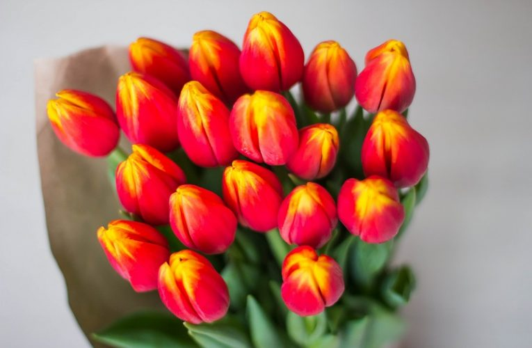 3 buchete de flori pe care le poti oferi in luna martie